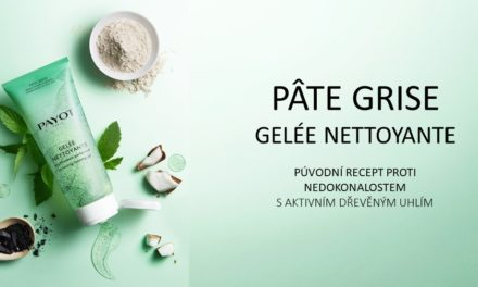NOVINKA: PÂTE GRISE NETTOYANTE
